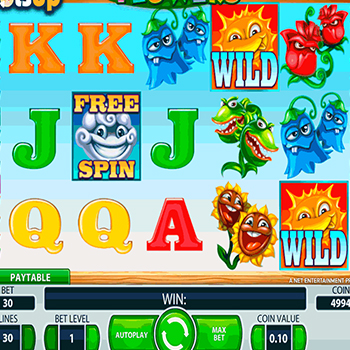 Slot Spiel Flowers von Net Entertainment